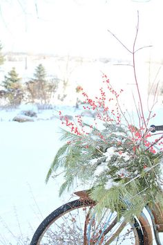 rusty hinge: Let it Snow