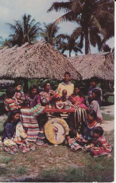 """""""Members of the Tiger Family"""" at Musa Isle. Buffalo Tiger's family became prominent in the Miccosukee Tribe. Seminole Indians, Seminole Florida, Native American Regalia, Indian Dolls, Indian Village, Old Dolls, Postcards, Buffalo, Old Things"""