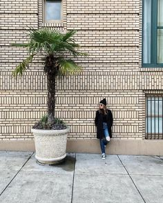 Don't let the palm tree and sunglasses fool you, it is still very much winter in Portland. #nomoresnow #sNOw Also, there is a new blog post up about our time at the beach! by (sarahcnelly). girlslovetravel #meettheworld #darlingweekend #sheisnotlost #she_explores #travelstoke #travelistagirls #travelinladies #wearetravelgirls #travelawesome #tourling #beautifulexplorers #dametraveler #thetravelwomen #girlsborntotravel #femmetravel #worldplaces #worldcaptures #nomoresnow #explorebabes…