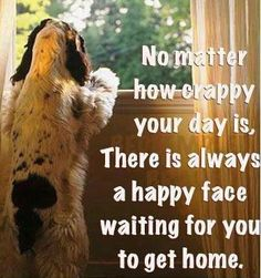 It's your cute #pup   #dogs  #quote  #dogquote  http://www.petrashop.com/