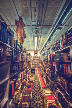 Inside Bookman/Bookwoman in Nashville, TN. I want to live there.