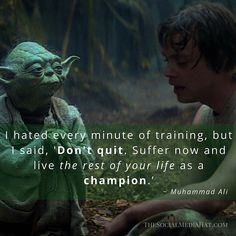 """I hated every minute of training but I said 'Don't quit. Suffer now and live the rest of your life as a champion.  Muhammad Ali  Be sure to tap FOLLOW for more great #StarWarsMotivations alongside social media marketing tips.  #StarWars #Quote #MotivationMonday #StarWarsEmpireStrikesBack #Luke #Yoda #MuhammadAli #Training #Champion #starwars #quote #Quotes #quote#quoteoftheday #quotestoliveby #quotestagram #quotesandsaying #motivation #Motivation #Inspiration #inspiration…"