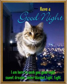As you prepare yourself for a comforting sleep, this cute #Kitty just dropped by to wish you #GoodNight. Send him to her #Friends to drop your Goodnight message with this cute Ecard. www.123greetings.com.