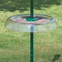 Try as they might, squirrels and cats can't get past it. This giant tray has a 470mm diameter. The top surface collects spilled seeds from feeders and makes an ideal feeding point for table scraps. Made in polycarbonate. For use with a Garden Pole.