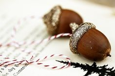 Nature crafts: Crafts to make with acorns. Acorn crafts: things you can make with acorns. Holiday Fun, Holiday Crafts, Home Crafts, Autumn Crafts, Nature Crafts, Thanksgiving Decorations, Christmas Decorations, Christmas Ornaments, Harvest Decorations