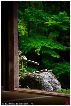 Renge-ji is a small temple in the north-east of Kyoto city. Despite its…