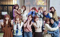 Lower right style Kpop Girl Groups, Kpop Girls, Asia Artist Awards, Sakura Miyawaki, Yu Jin, Japanese Girl Group, Kim Min, Pledis Entertainment, 3 In One
