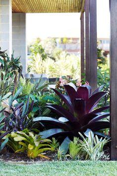 25 Perfect Tropical Garden Design Ideas - Your Staycation Oasis – Easy To Grow. - 25 Perfect Tropical Garden Design Ideas – Your Staycation Oasis – Easy To Grow Bulbs The Effect -