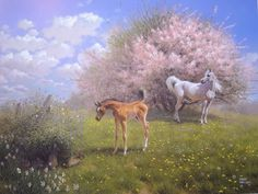 A Dream of Spring, signed limited edition Arabian Horse print by Mary Haggard Beautiful Horse Pictures, Beautiful Horses, Horse Artwork, Horse Paintings, Arabian Art, Arabian Horses, A Dream Of Spring, Street Art Photography, Puzzle Art