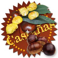 Recetas con Castañas Chestnuts Recipes Recettes à la châtaigne