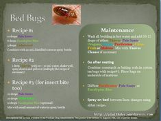 Tips on getting rid of bed bugs with Young Living Essential Oil