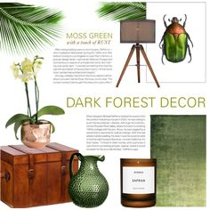 Moss Green with a Touch of Rust by rachaelselina on Polyvore featuring interior, interiors, interior design, home, home decor, interior decorating, Lite Source, Designers Guild, OKA and Amara