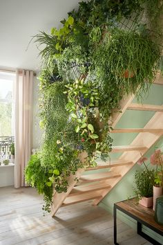 gardens under the stairs * gardens stairs - gardens under stairs - outdoor gardens stairs - indoor gardens under stairs - stairs in gardens - gardens under the stairs - gardens with stairs - green wall stairs vertical gardens Room With Plants, House Plants Decor, Indoor Garden, Indoor Plants, Home And Garden, Outdoor Gardens, Creative Wall Decor, Garden Stairs, Deco Nature