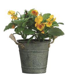 Look at this #zulilyfind! Yellow Pansy Pot Arrangement by Allstate Floral & Craft #zulilyfinds