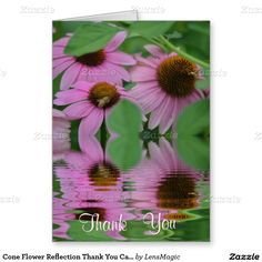 Cone Flower Reflection Thank You Card
