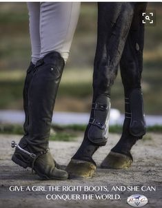 #HorseClothes