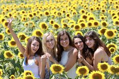 Sunflowers, Italy, Best Friends, photos, ideas, picture, travel, vacation, fun, sun, sunflower, sisters, sister, creative, pose, poses, friend poses Sister Pics, Sister Pictures, Best Friend Pictures, Teen Fashion Photography, Friend Poses Photography, Sunflower Field Pictures, Sunflower Pictures, Farm Pictures, Spring Pictures