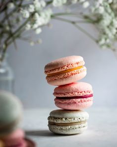 Photo by Kamile Kave Food Portraiture Chocolate Macaroons, French Macaroons, Coconut Macaroons, Blue Macaroons, Coconut Chocolate, Macaroon Wedding Favors, Macaroons Wedding, Macaroon Filling, Gastronomia