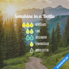 Sunshine in a Bottle - Essential Oil Diffuser Blend