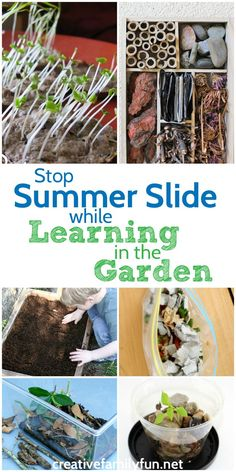Stop summer slide wi