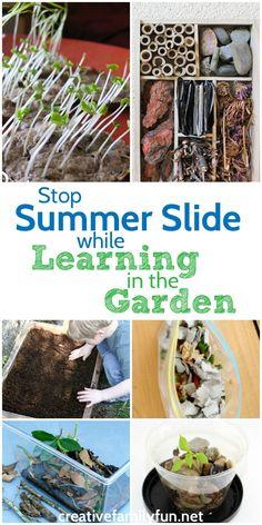 Stop summer slide wi
