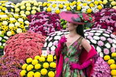 City Spy at the Chelsea Flower Show: Flourishing displays - a hint ...