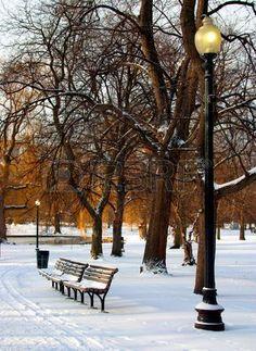 Boston Public Garden in snow, USA
