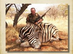 http://www.riebeltonsafaris.co.za/wp-content/uploads/2016/10/Riebelton-Hunt-Zebra-Burchell-396x297.jpg