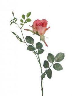 Artificial Rose Stem - Dusky Pink 'Alice Rose'