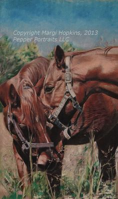 Horse Art Original Colored Pencil Painting on Linen by by MargiH, $875.00