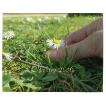#Spring 2016, Child Picking #Daisy Flowers, #Jigsaw Puzzle