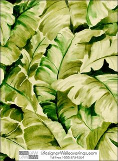 Tito's Tropical Banana Leaf Wall Paper  [WAT-39935] Water Colors Wall Paper | DesignerWallcoverings.com ™ - Your One Stop Showroom for Custom, Natural, & Specialty Wallcoverings | Largest Selection of Wall Papers | World Wide Showroom | Wallpaper Printers