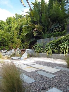 pea gravel patio Modern Landscape Decorating ideas Los Angeles aloe boulders concrete pavers concrete steps courtyard fountain gravel Landscape palm trees pavers rocks Tall Trees wall water element