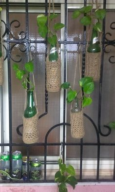 43 Decorative Wine Bottle Planter for Small Balcony and Garden - Balcony Decorat. - 43 Decorative Wine Bottle Planter for Small Balcony and Garden – Balcony Decoration Ideas in Ever - House Plants Decor, Plant Decor, Hanging Plants, Indoor Plants, Beer Bottle Crafts, Beer Bottles, Wine Bottle Planter, Wine Bottle Garden, Small Balcony Garden