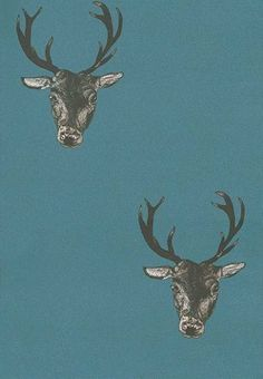 Stag Print Teal (26220) - Graduate Collection Wallpapers - A stunning, bold, hand drawn black Stag design from Lisa Bliss on a rich, deep Teal coloured background.  Larger scale also available. Paste the wall product. Please request sample for true colour match.
