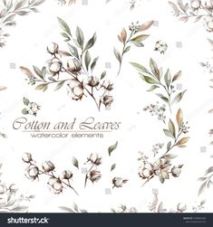 set of cotton flowers, branches and leaves. romantic set for graphic design, greeting and wedding cards, textile design. Victorian Candles, Wreath Drawing, Flower Branch, Crests, Invitation Ideas, Baby Decor, Watercolor Illustration, Textile Design, Royalty Free Images