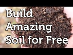 Build Amazing Fertile Garden Soil Using Free and Local Resources in your Mulch or Compost - YouTube