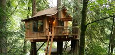 5 Sublime Treehouse Hotels for Your Next Tree Hugger Vacation