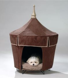Our pup would love this!