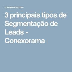 3 principais tipos de Segmentação de Leads - Conexorama