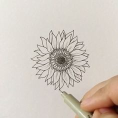 """17.1k Likes, 63 Comments - Grace (@foundbygrace_) on Instagram: """"Throwing it back to- How to draw: a flower! I apologize that I haven't had time to make these how…"""""""