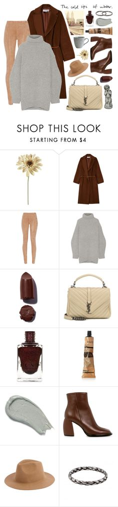 """""""join our new contest 'color scheme' (view description)"""" by jesuisunlapin ❤ liked on Polyvore featuring Gérard Darel, Balmain, Acne Studios, Yves Saint Laurent, Aesop, Omorovicza, TIBI, Armitage Avenue, House Doctor and suede"""