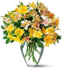 Alstroemeria is a favorite of mothers and grandmothers across the globe. This arrangement featuring alstroemeria is on sale for Mother's Day making it a good deal and a great choice.
