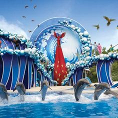SeaWorld San Diego Discount Admission Tickets | Southern California CityPASS® Attraction