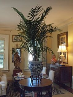 very taken by the British Colonial flavor the palm gives this room...and there's that touch of blue and white!