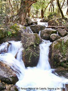 El Parque Natural de Cazorla, Segura y las Villas. http://arteole.com/blog/el-parque-natural-de-cazorla-segura-y-las-villas/