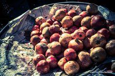 Pomegranates, Egypt