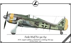 """The Fw 190 A-9 was the last A-model produced, and was first built in September 1944. The A-9 was fitted with the new BMW 801S, called the 801 TS or 801 TH when shipped as a more complete Triebwerksanlage version of the modular Kraftei or """"power egg"""" concept, unitized engine installation (an aircraft engine installation format embraced by the Luftwaffe for a number of engine types on operational aircraft, in part for easy field replacement) rated at 2,000 PS (1,973 hp, 1,471 kW); the more…"""