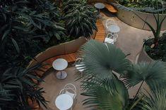 The Spheres: el oasis tropical de Amazon en el centro de Seattle - Basado en la naturaleza | Galería de fotos 1 de 8 | AD