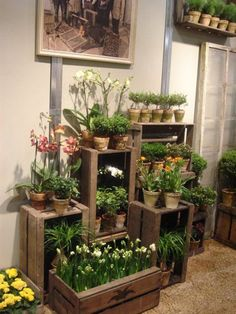 DIY Wooden Crate for Balcony Garden - Balcony Decoration Ideas in Every Unique Detail The Effective Pictures We Offer You About Balcony Garden plants A quality picture can tell you many things. Porch Garden, Balcony Garden, Garden Pots, Easy Garden, Balcony Plants, Diy Jardin, Diy Wooden Crate, Wooden Crates, Balcony Flowers